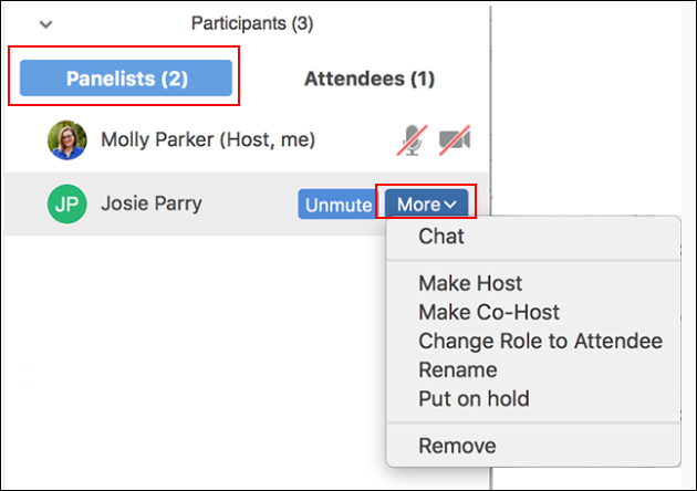 Picture of the More menu in the Panelist tab of Participants