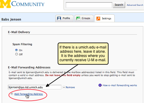 Screenshot of Add Forwarding Address link.