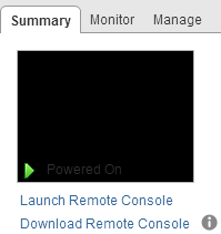 On the summary tab of the Virtual Machine Object, select Launch Remote Console