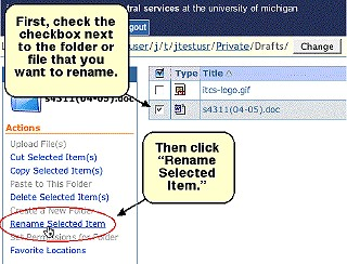Screenshot of checkbox and Rename Selected Item link