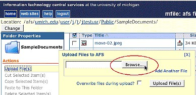 Screenshot of Browse button