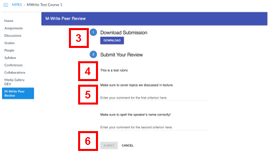canvas - peer review page